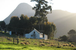 hermanus farm stay